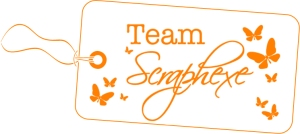 Logo_Scraphexe_Team