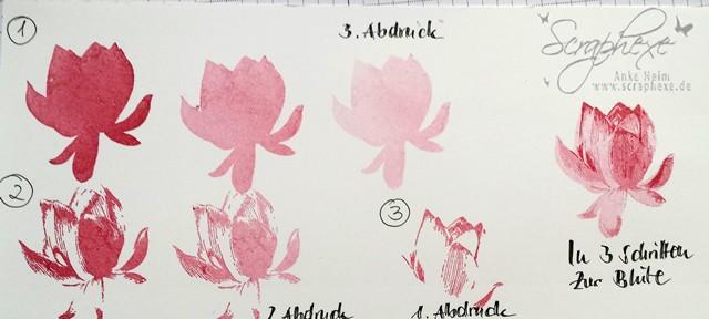 Lotusblüte, So froh, Schritte, Scraphexe