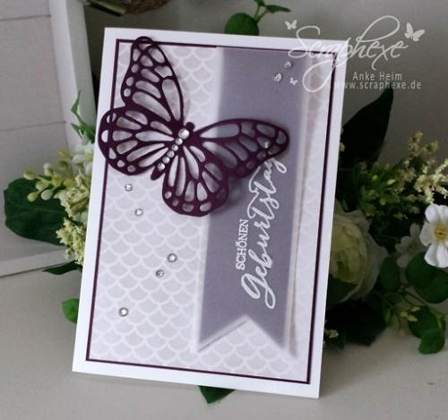 Schmetterlingsgruß, scraphexe